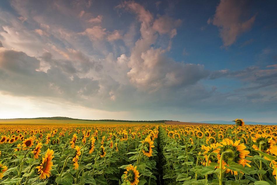 3024 Болгарские пейзажи фотографа Евгения Динева
