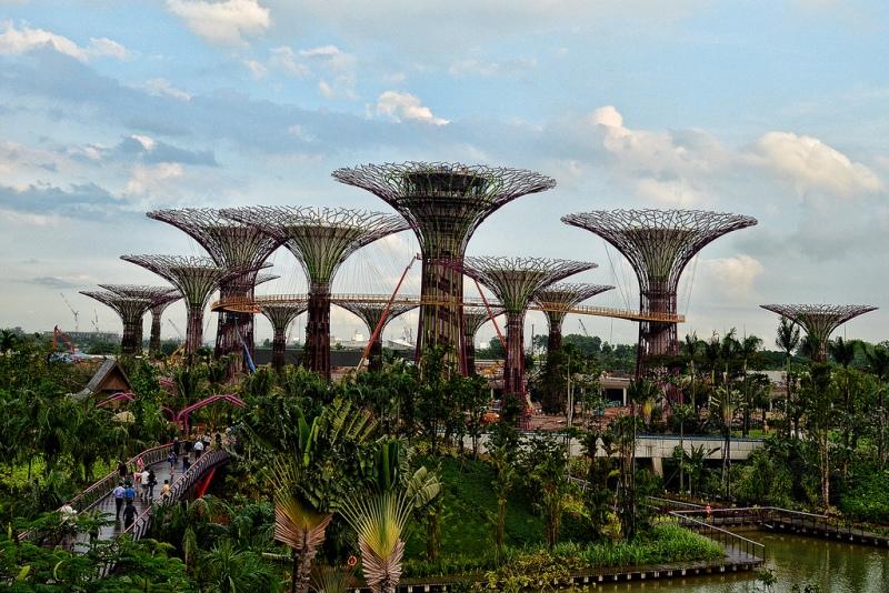 3199 Супер деревья Сингапура