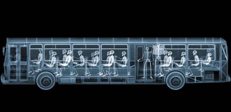 33Автобус Рентгеновский взгляд на мир Ника Визи