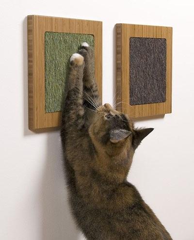 3330 Дизайн для котов