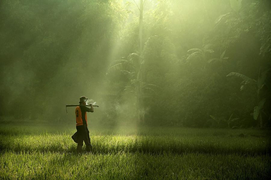 3337 Индонезийские истории фотографа Девана Иравана