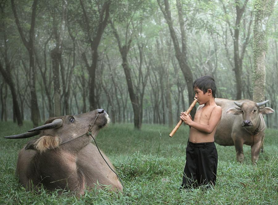 3729 Индонезийские истории фотографа Девана Иравана