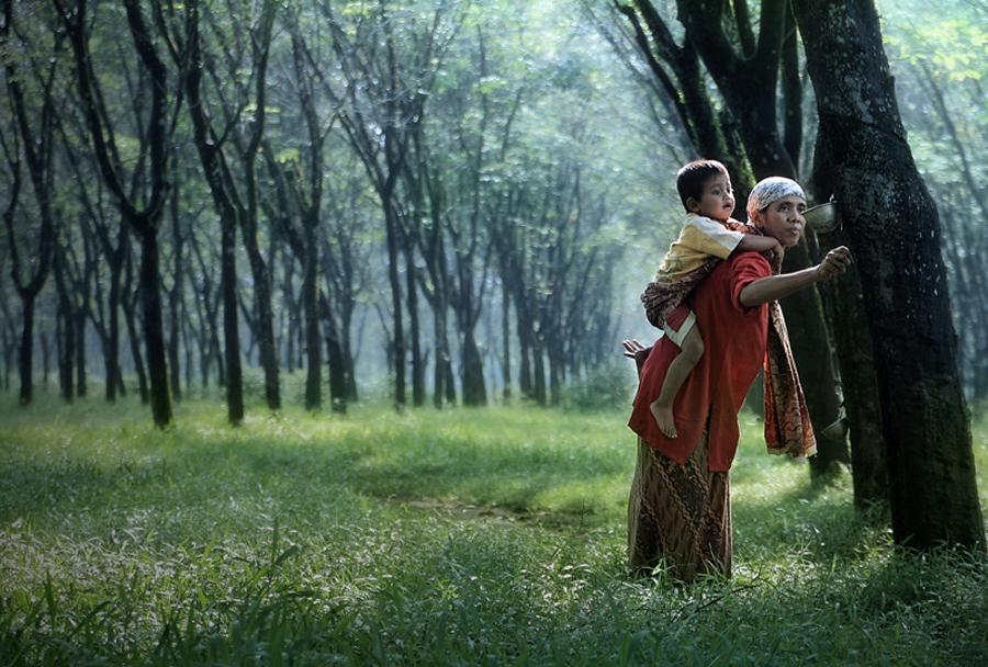 3825 Индонезийские истории фотографа Девана Иравана