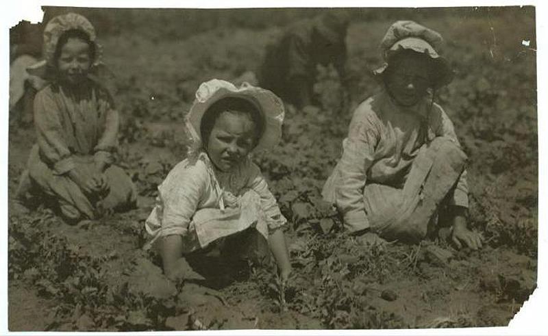 4106 Детский труд в истории