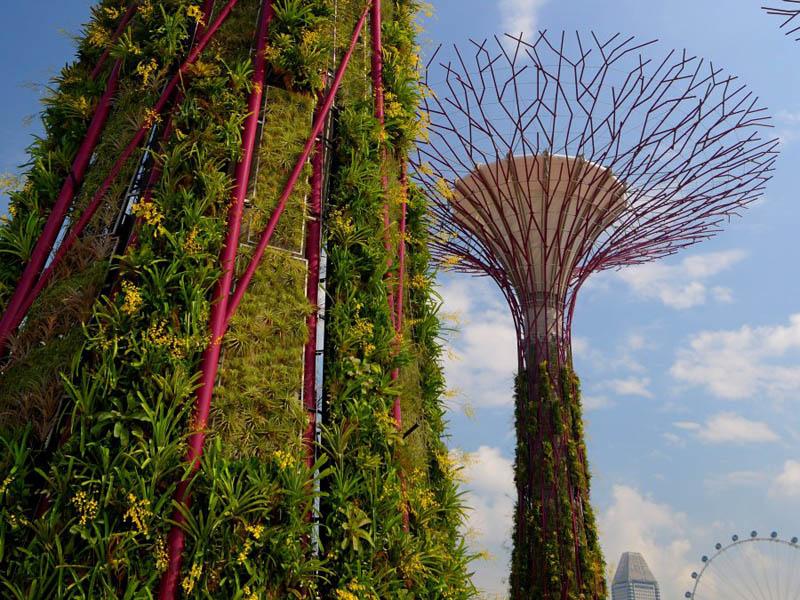 4160 Супер деревья Сингапура
