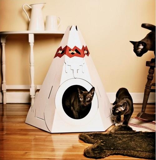 4167 Дизайн для котов