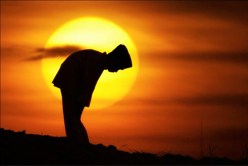 417 Солнечные силуэты в фотографиях Ирвинга Лубиса