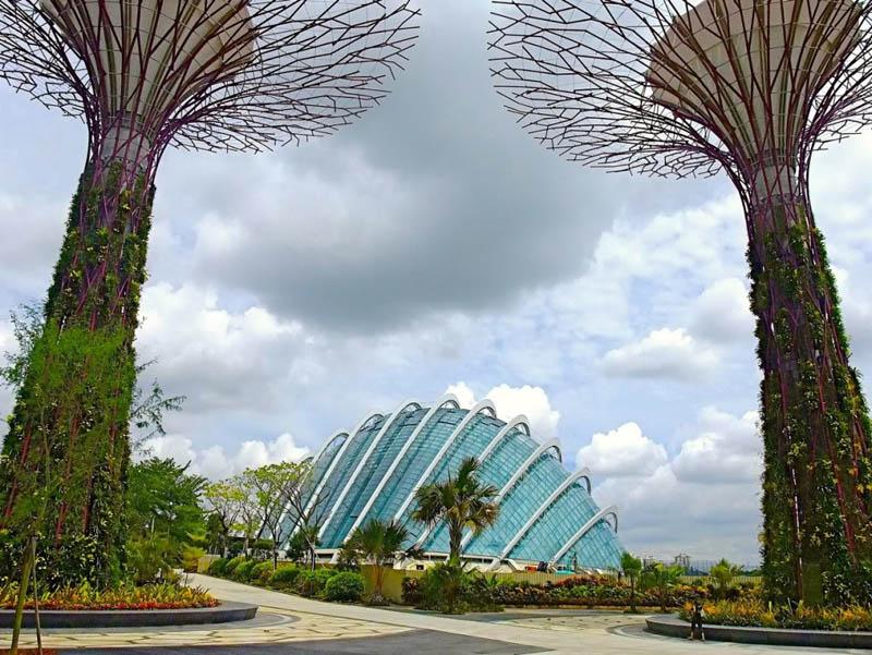5143 Супер деревья Сингапура