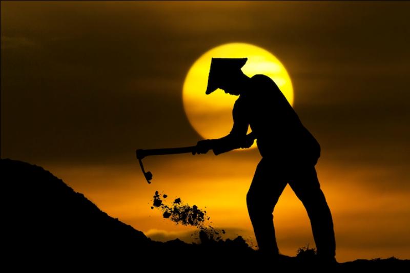612 Солнечные силуэты в фотографиях Ирвинга Лубиса