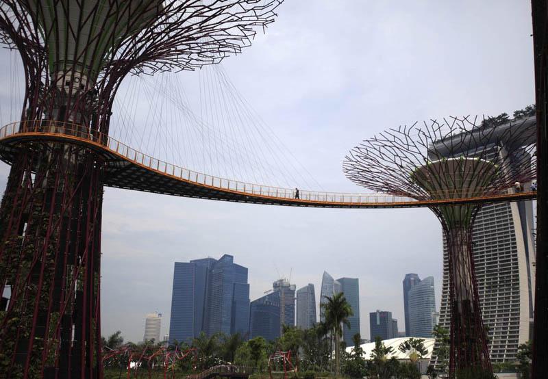 6129 Супер деревья Сингапура
