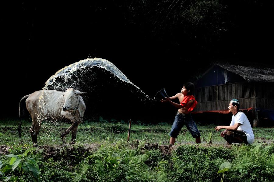 6155 Индонезийские истории фотографа Девана Иравана