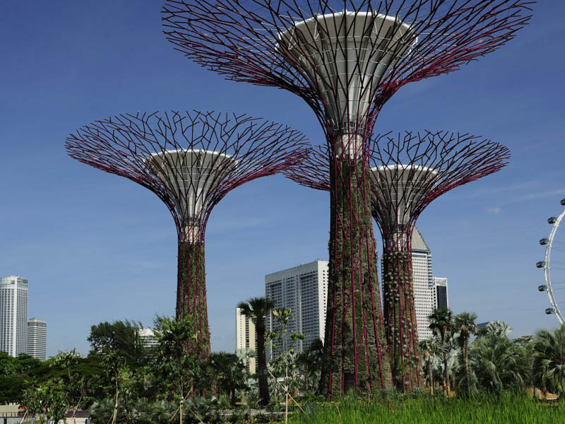 7120 Супер деревья Сингапура