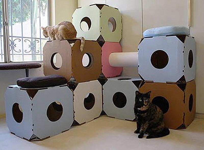 7127 Дизайн для котов