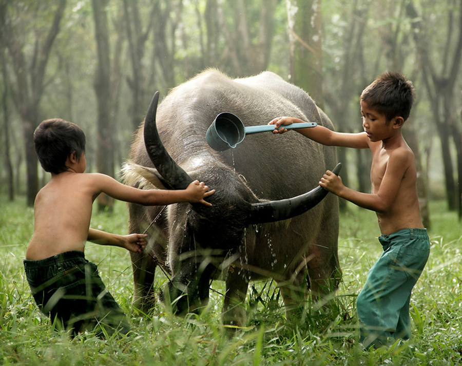 7145 Индонезийские истории фотографа Девана Иравана