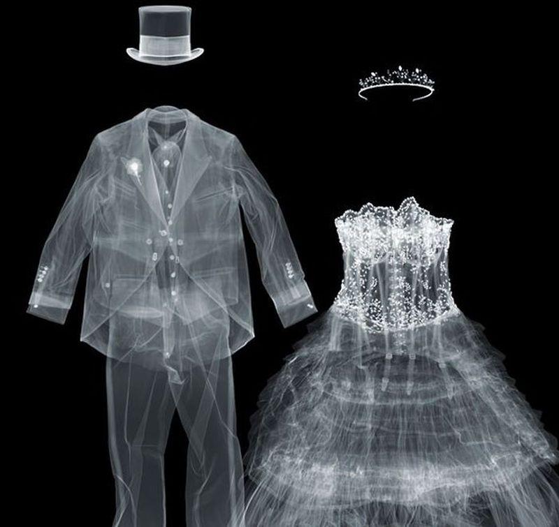 8Жених и невеста Рентгеновский взгляд на мир Ника Визи