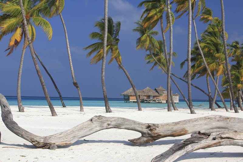 8 Удивительные домики отеля Soneva Gili на Мальдивах