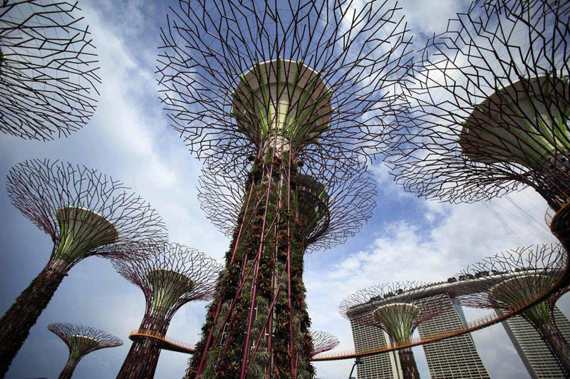 8112 Супер деревья Сингапура