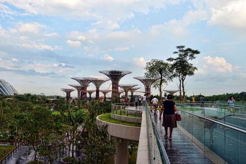 9105 Супер деревья Сингапура