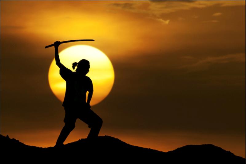 99 Солнечные силуэты в фотографиях Ирвинга Лубиса