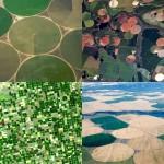 Рукотворные круги на полях