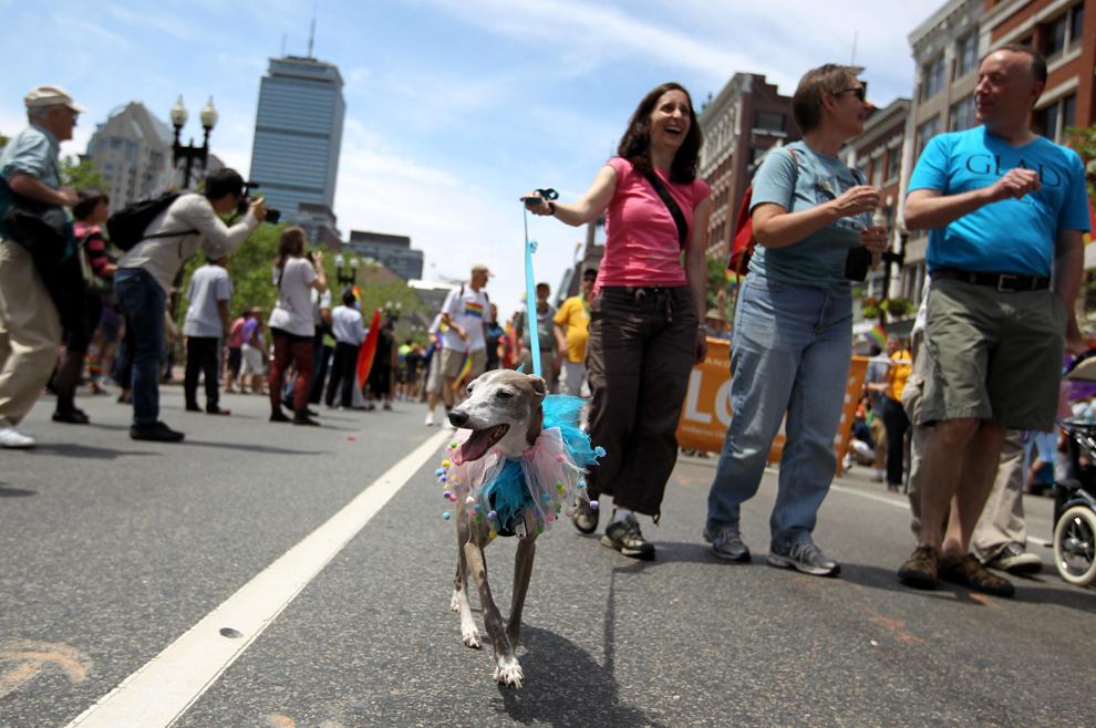 LGBT 25 Гей парады во всем мире 2012