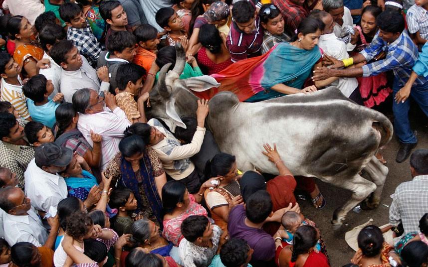 Ratha Yatra4 Праздник Ратха ятра в Индии