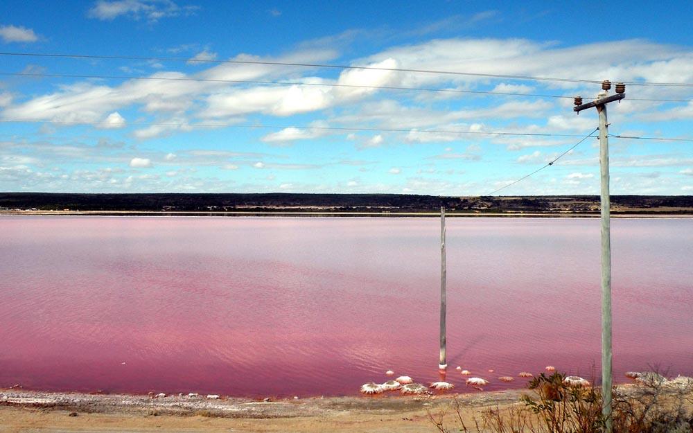 beautiful pink lake 97385 1920x1200 Розовое озеро в Сенегале