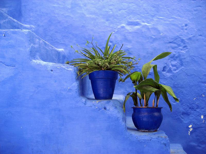 blue 18 Голубой город Шефшауен