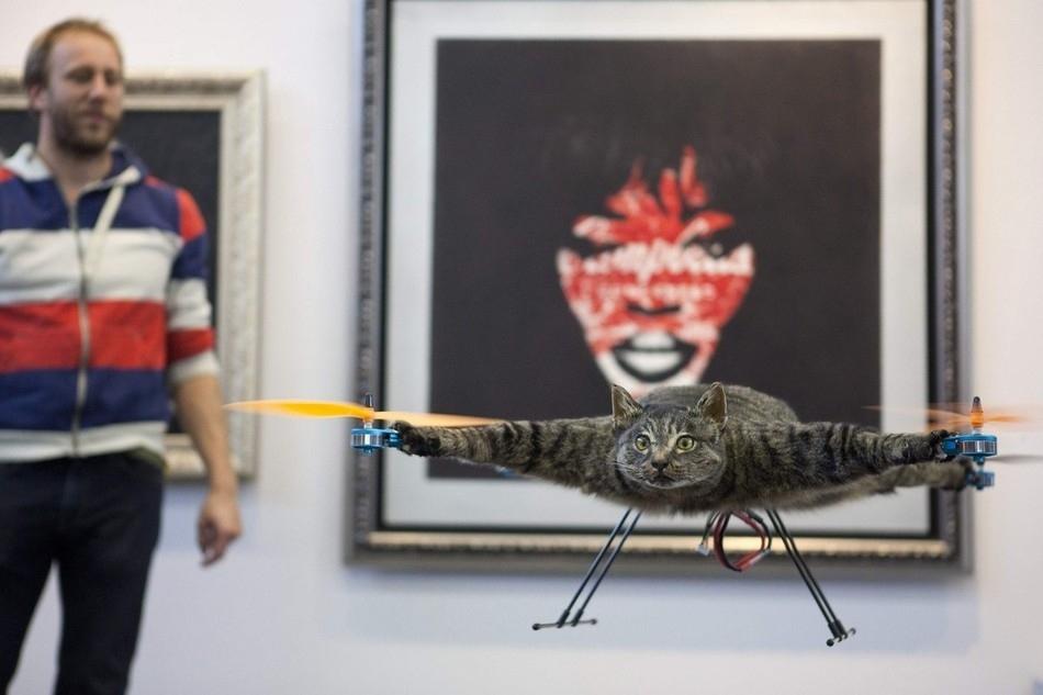 enhanced Летающий кот с моторчиками – ужас из Амстердама