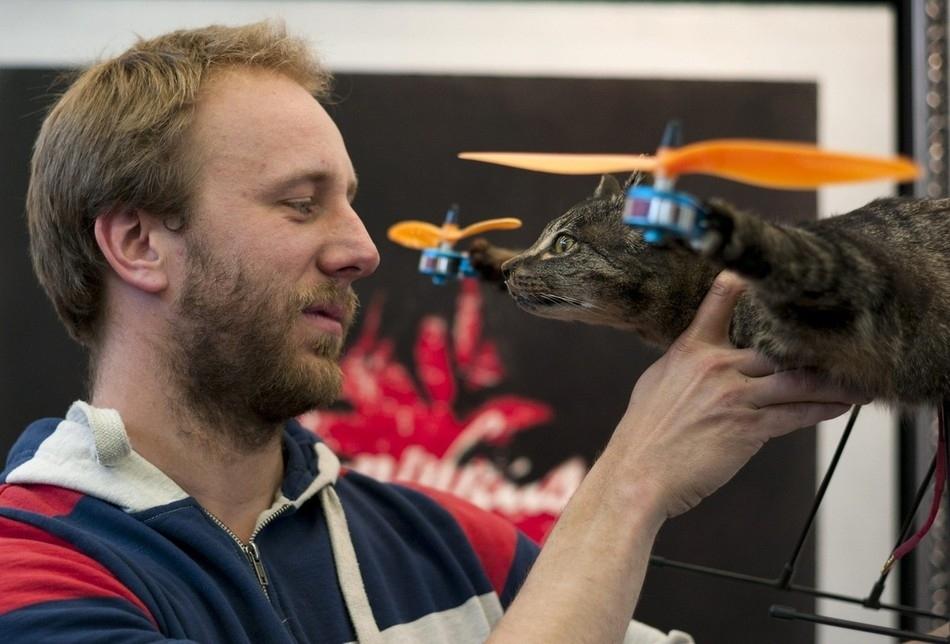 enhanceg Летающий кот с моторчиками – ужас из Амстердама