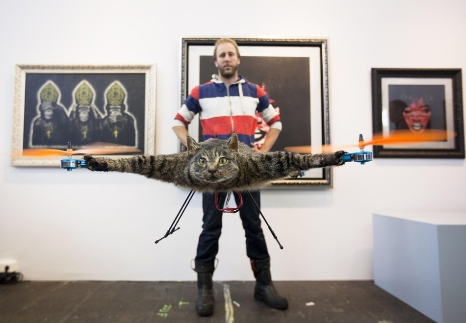 enhanceh Летающий кот с моторчиками – ужас из Амстердама