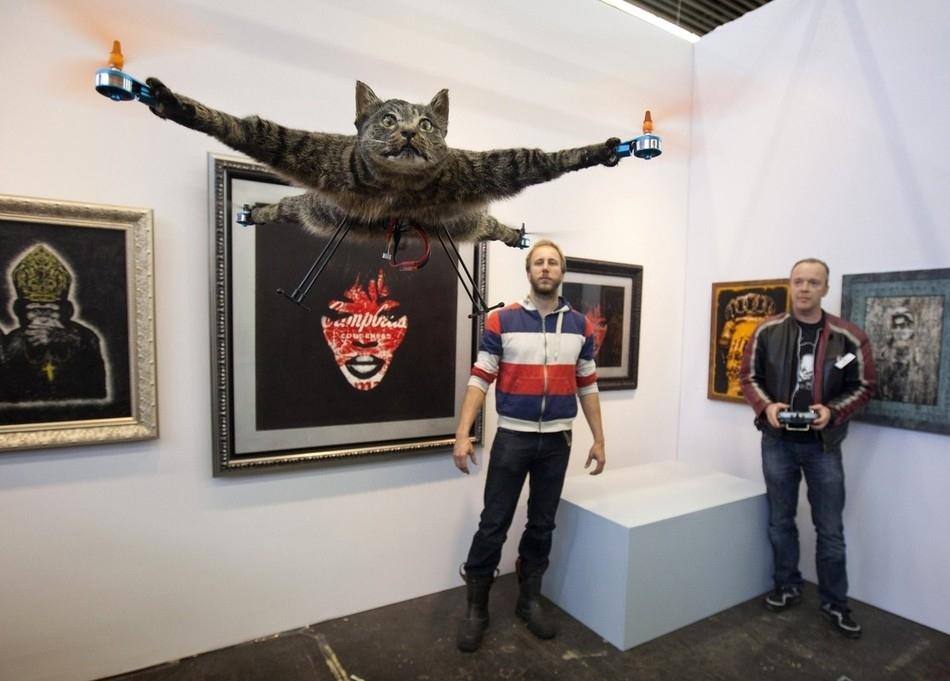 enhancej Летающий кот с моторчиками – ужас из Амстердама