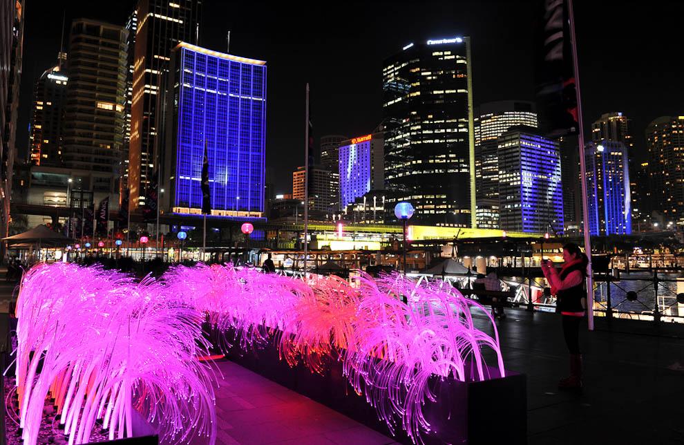festivat Фестиваль света в Сиднее