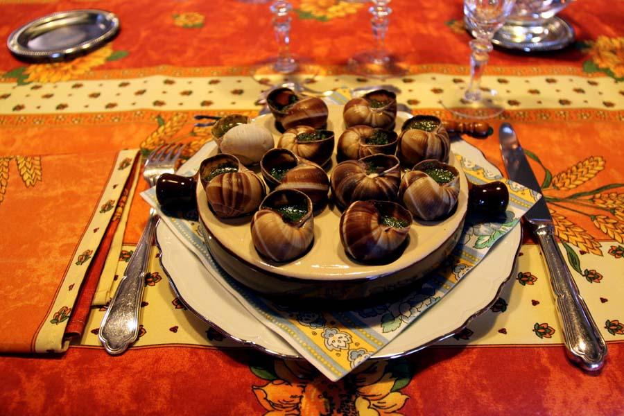 snail15 Ферма по выращиванию улиток