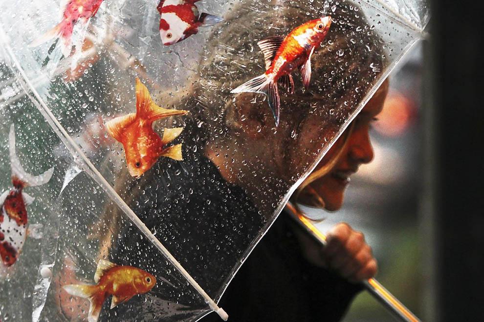 zonti 10 Зонтики из разных стран мира