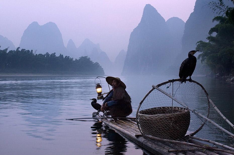 1141 Традиционная китайская рыбалка с бакланами