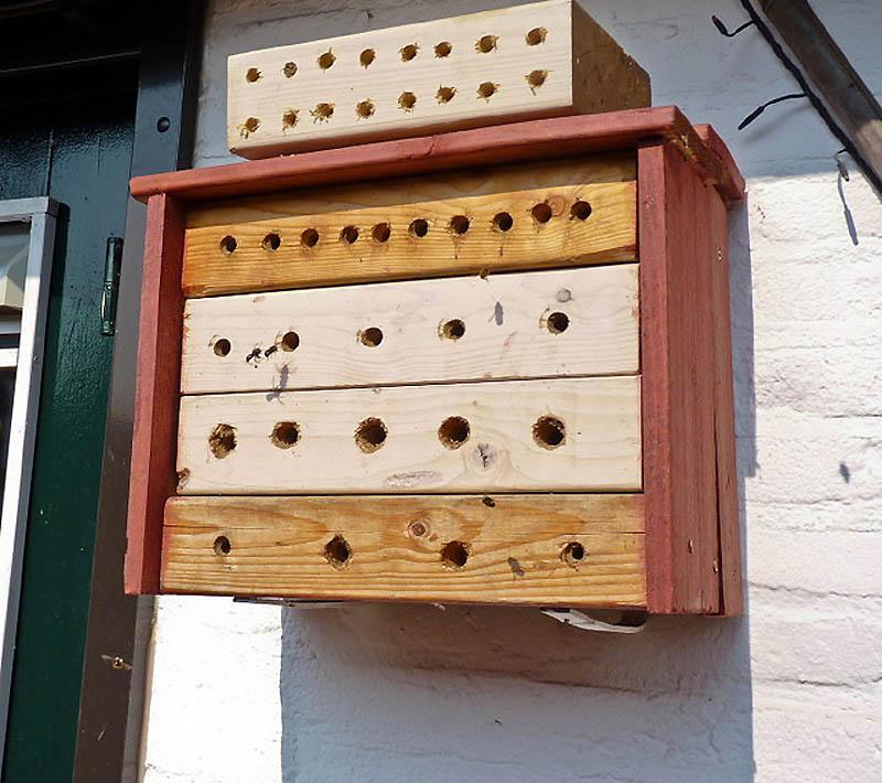 1624 Добро пожаловать в пчелиный отель!