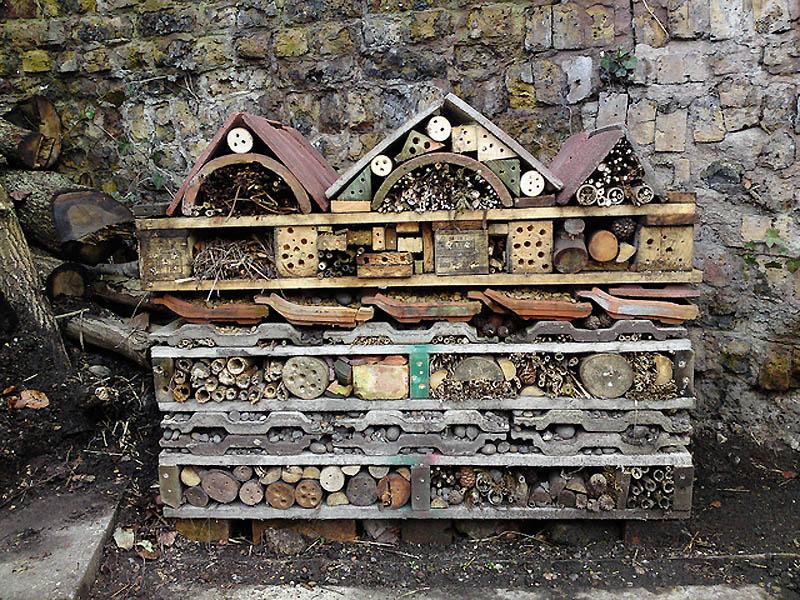1724 Добро пожаловать в пчелиный отель!