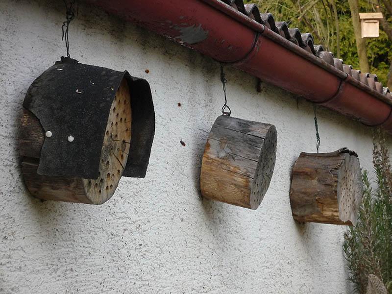 2318 Добро пожаловать в пчелиный отель!