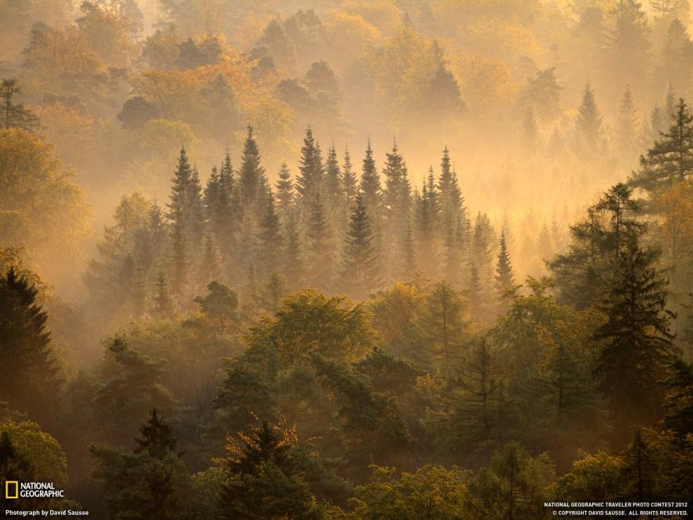 28 990x742 Обои для рабочего стола от National Geographic за июнь 2012