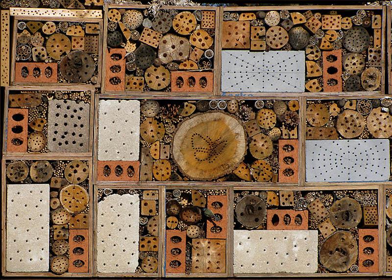3102 Добро пожаловать в пчелиный отель!