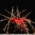 Гимнасты в движении