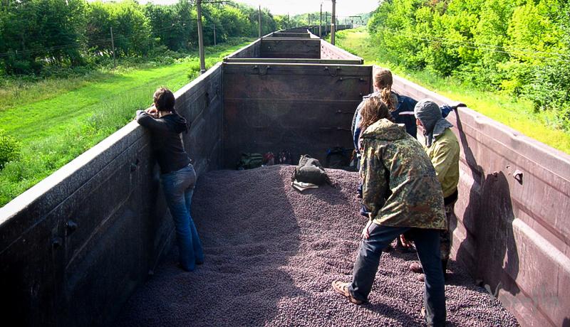 713 Бродяги Дхармы по украински или просто еще один эпизод лета