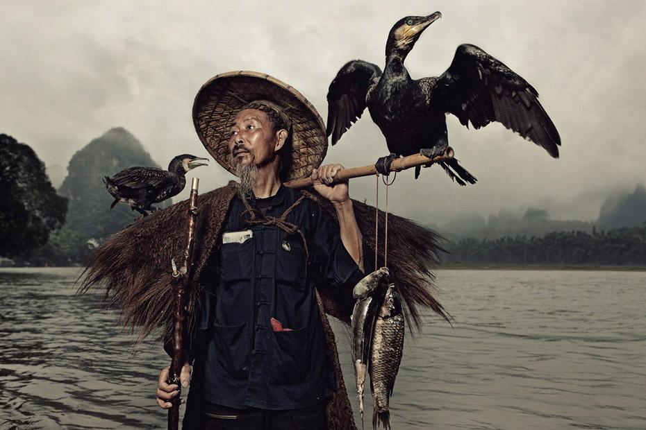 832 Традиционная китайская рыбалка с бакланами