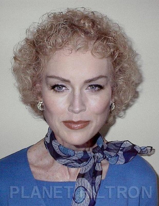 Sharon Stone 619x800 Если бы знаменитости выглядели как обычные люди. Юмористический фотопроект Дэнни Эванса