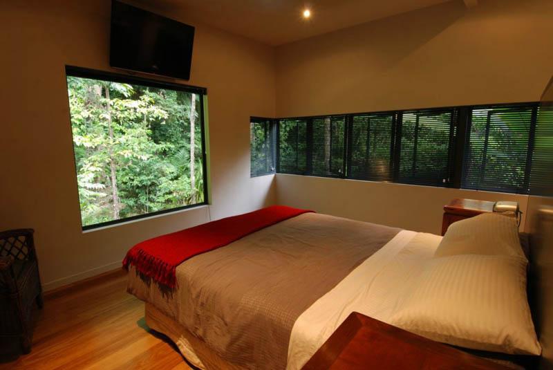 TreeHouse 9 Дом на дереве в тропическом лесу Австралии