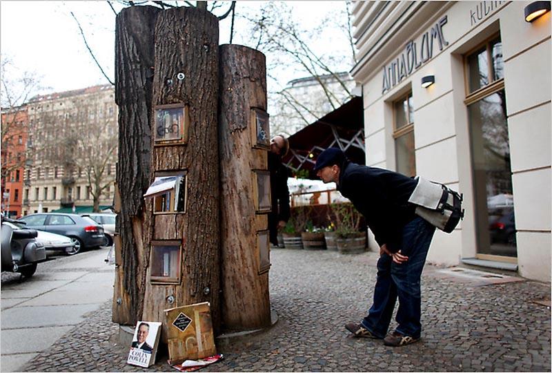 Книжный шкаф — дар природы