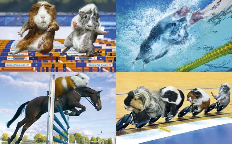 Юмористический олимпийский календарь