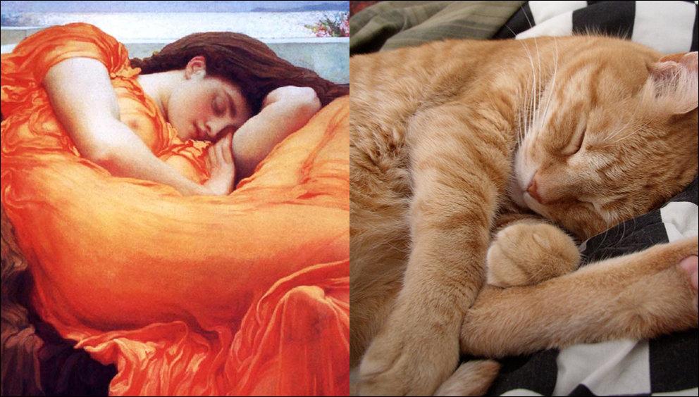 Коты и искусство!
