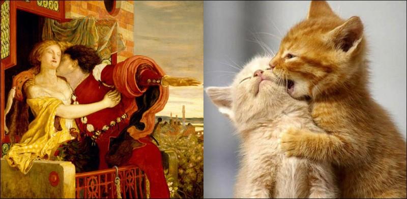 catsandart 13 800x391 Коты и искусство